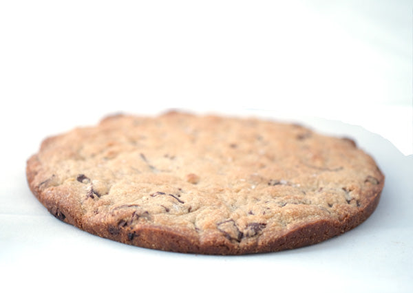 XL Chocolate Chip Cookie