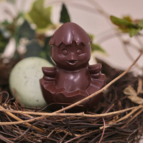 Chocolate Chick