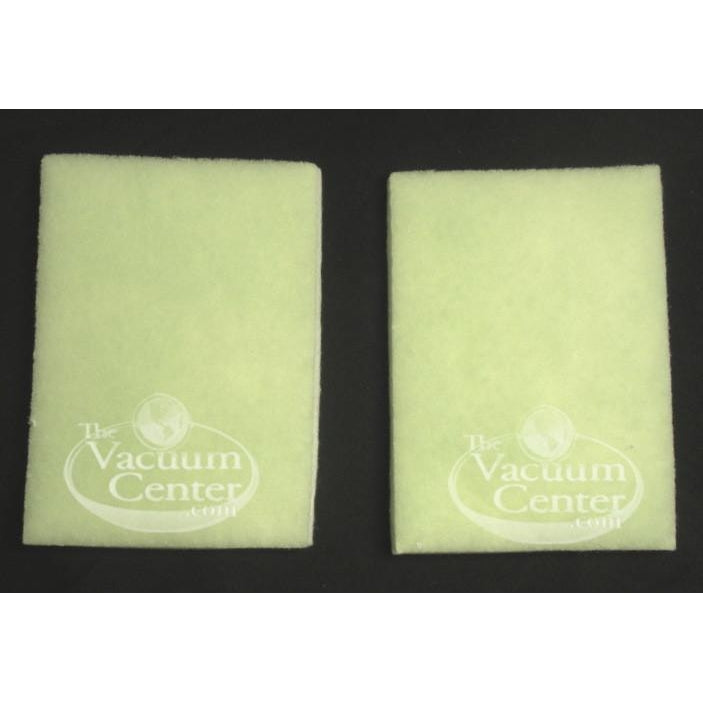 Package of 2 Genuine Panasonic Secondary HEPA Filter V5100-V5300 - TheVacuumCenter.com