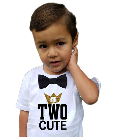 Boys 2nd Birthday Shirt Mr Two Cute Navy and Grey Bow Tie