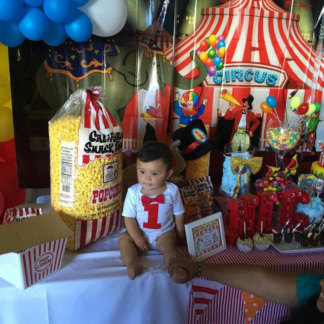 The Best Party Games For Baby S First Birthday: Circus Birthday Outfit Baby Boy Carnival Theme Animals Big