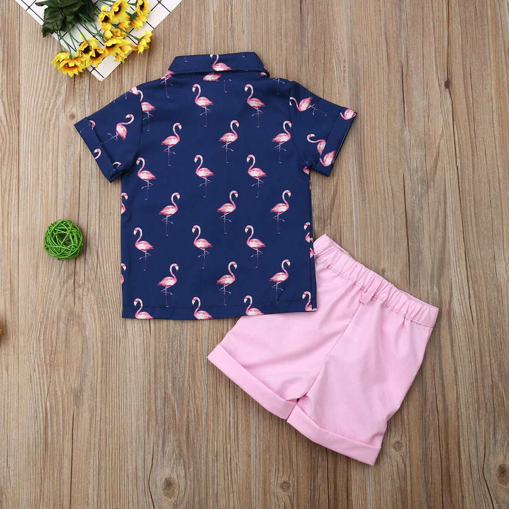 Boys Flamingo Shirt Button Up and Shorts Set Cute Toddler Boy Outfits Tropical Hawaii
