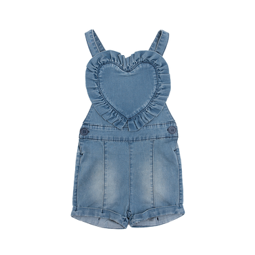 CHAMBRAY TWIGGY OVERALLS