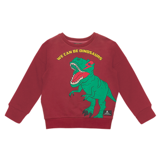 WE CAN BE DINOSAURS BABY SWEATSHIRT