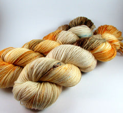 Autumn colorway by Dye is Cast Yarns