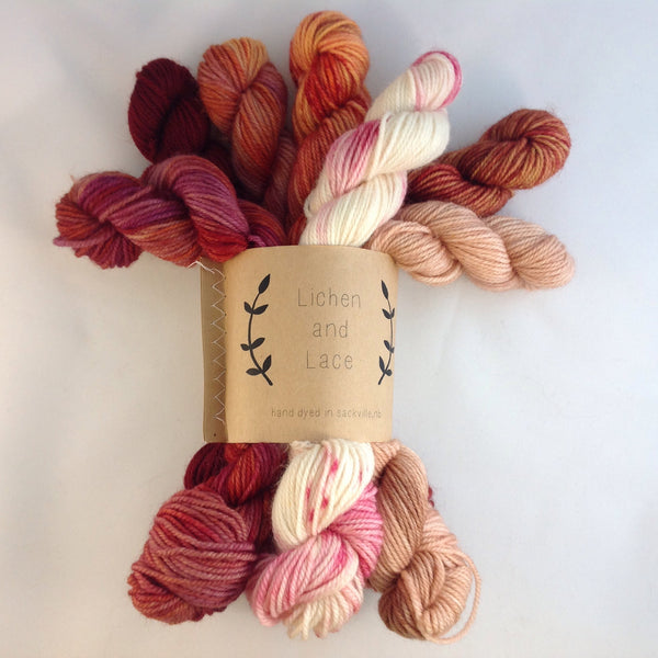 Lichen and Lace Mini Sock Fade Sets