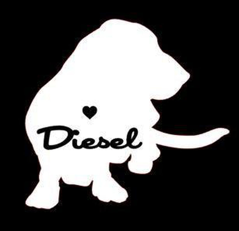 Basset Hound Car Decals