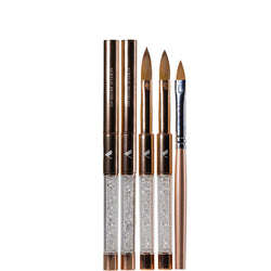 Acrylic Brush Kit With 3D Art Brush