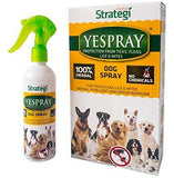 Strategi YeSpray Dog Spray 100 ML