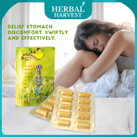 [HARVEST] Refresh Stomach Easy - Gastrointestinal Support 20 Veg Caps [Bundle of 4] - Bloom Concept