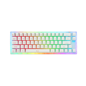 Womier 66% Semitransparent Hotswappable Mechanical Keyboard