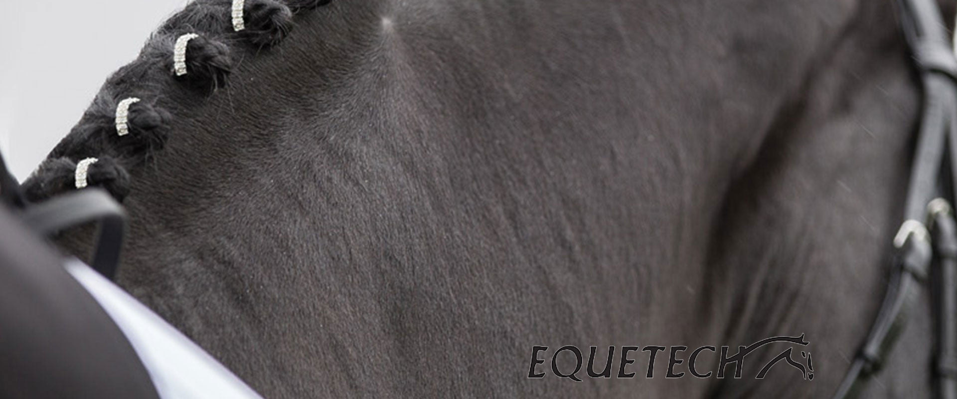 Equetech Horse & Rider