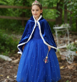 Cinderella Disney Princess Kostum Impor Dress