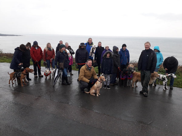 Group Dog Walks to Enjoy over the Christmas Festive Season