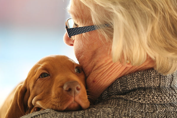 This Dog Is Helping With Alzheimer's: Richard's Story