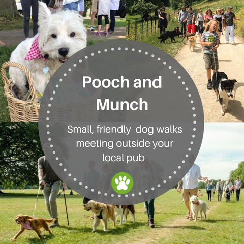 Pooch and Munch dog walks from pubs