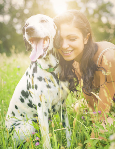 gifts for dalmation lovers