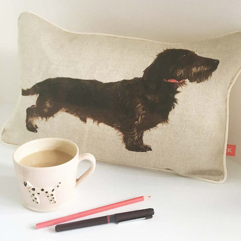 Long haired Dachshund cushion