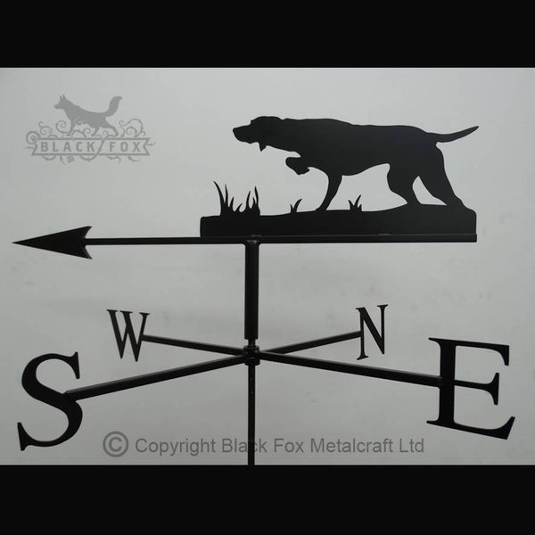 weathervane Pointer Weathervane