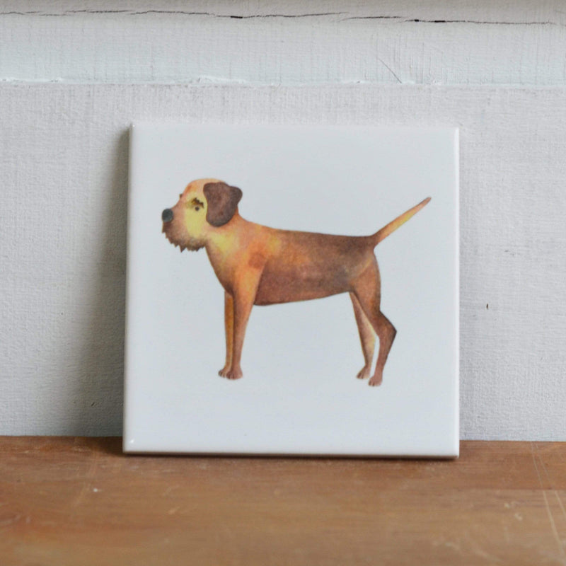 Coasters Border Terrier coaster