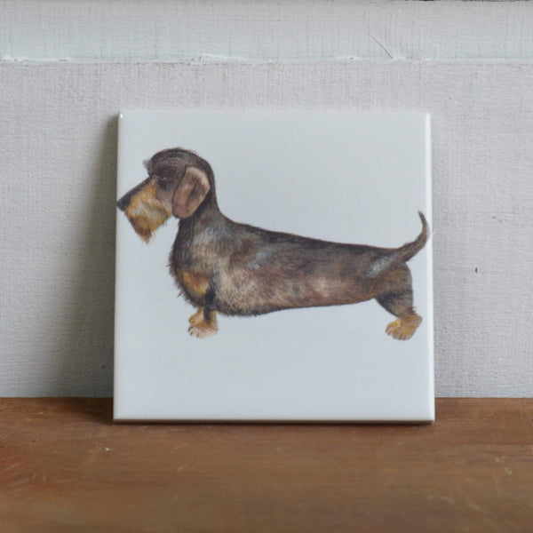 Coasters Coaster alone Coaster for Dachshund Dog Lovers