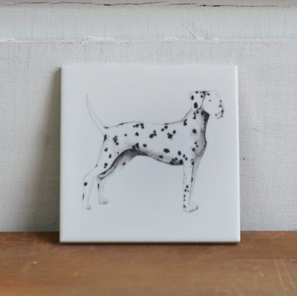 Coaster alone Dalmatian Coaster for dog lovers