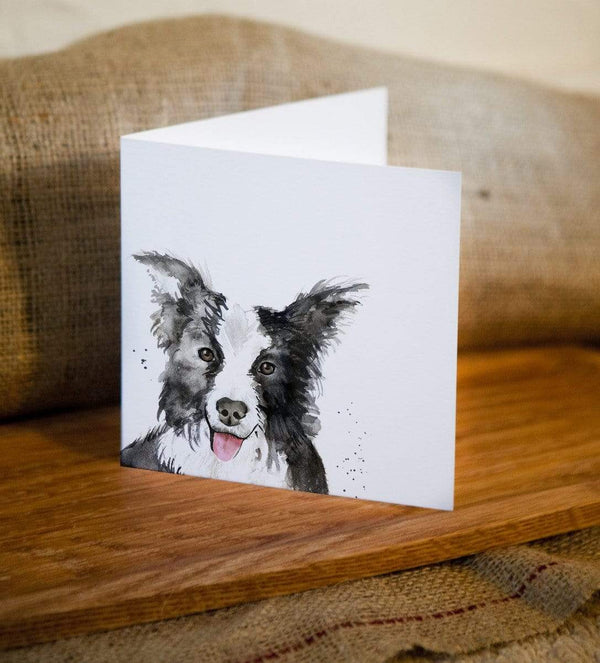 Greeting Card Border Collie Dog Greetings Card
