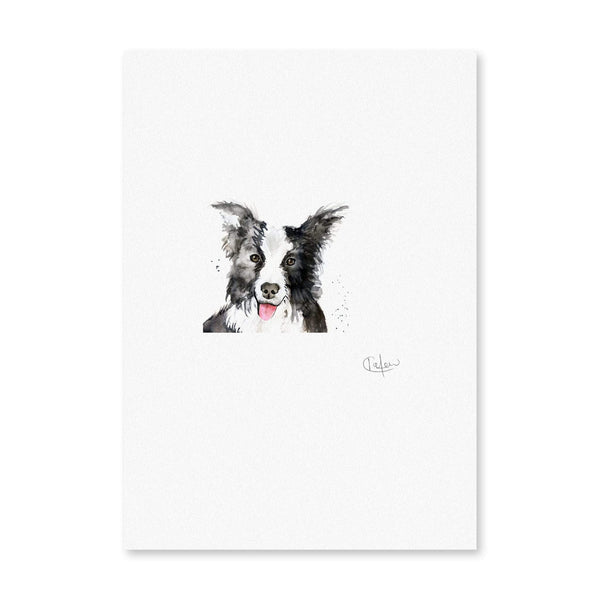 Print Unframed Border Collie Dog Illustration Print