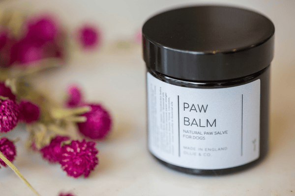 Natural Dog Paw Balm - 100% Natural Balm with Organic Hemp
