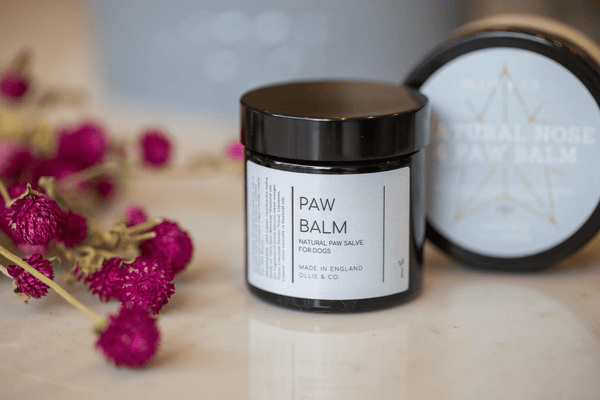 Natural Dog Tooth Powder and Paw Balm Set