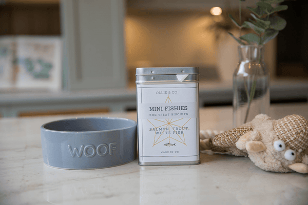 Tasty Mini Fishies Treats for Dogs