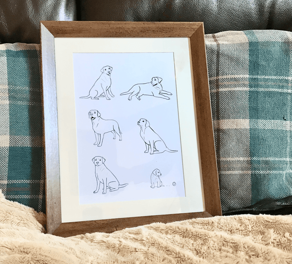 Print Labrador Illustration