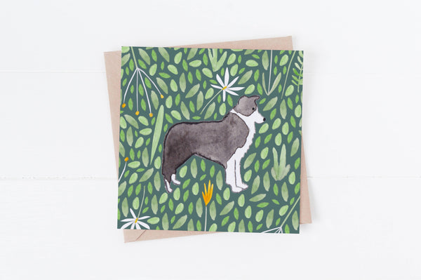 Greeting Card Border Collie Greeting Card