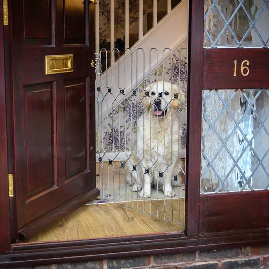 dog safety gate EXTRA PANEL TO EXTEND DOG-G8