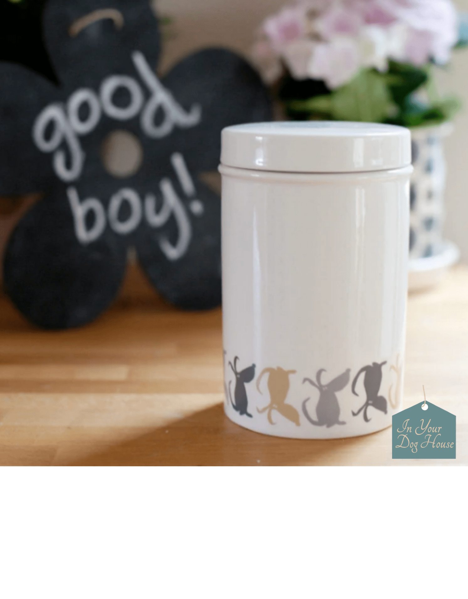 Food Storage for Dogs