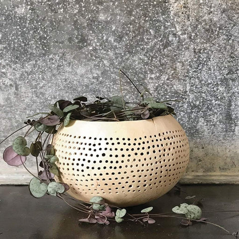 Cream Coconut Bowl Small Dots - insideout-home
