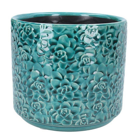 Teal Succultents Pot Large - insideout-home