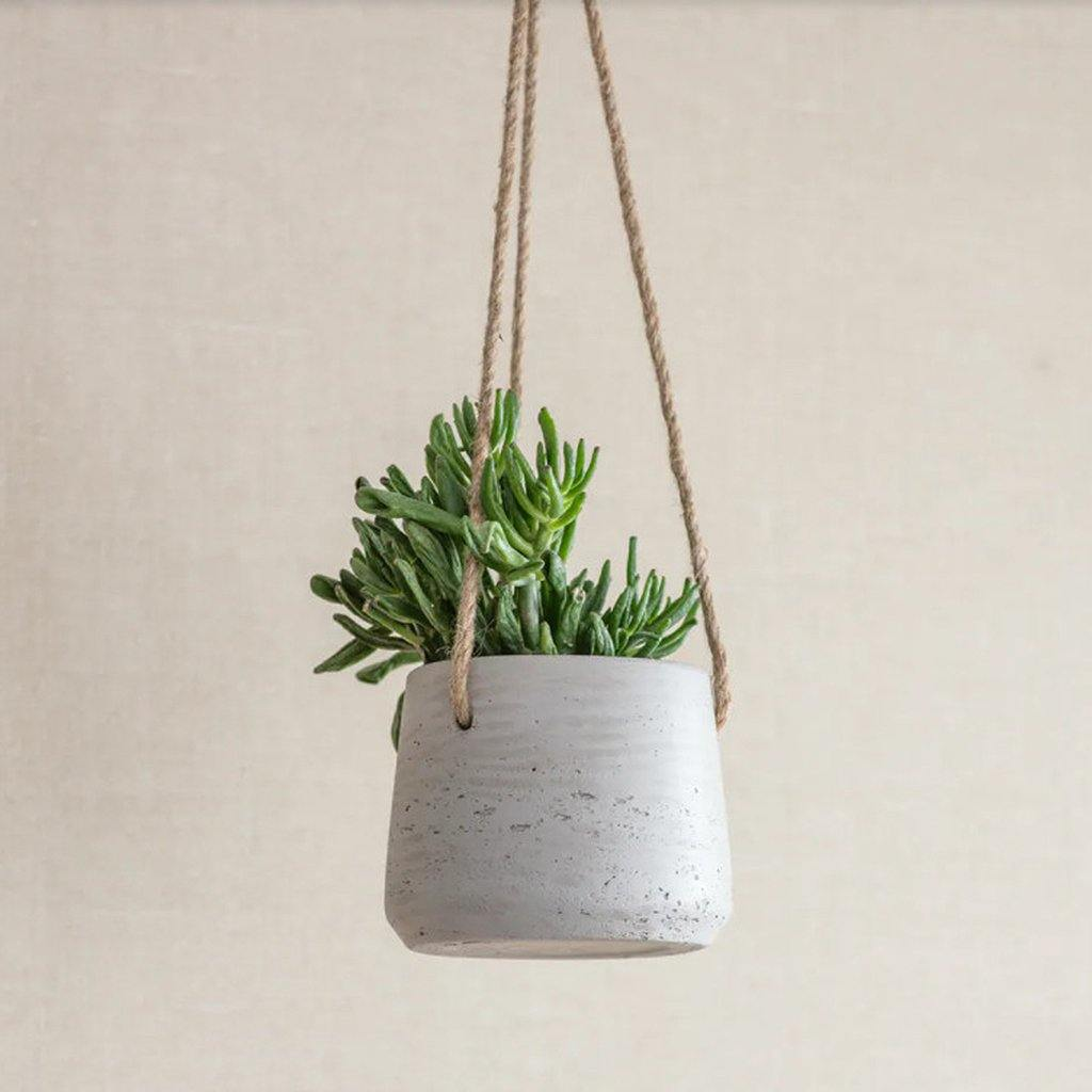 Stratton Hanging Pot Stone, Plants by Insideout