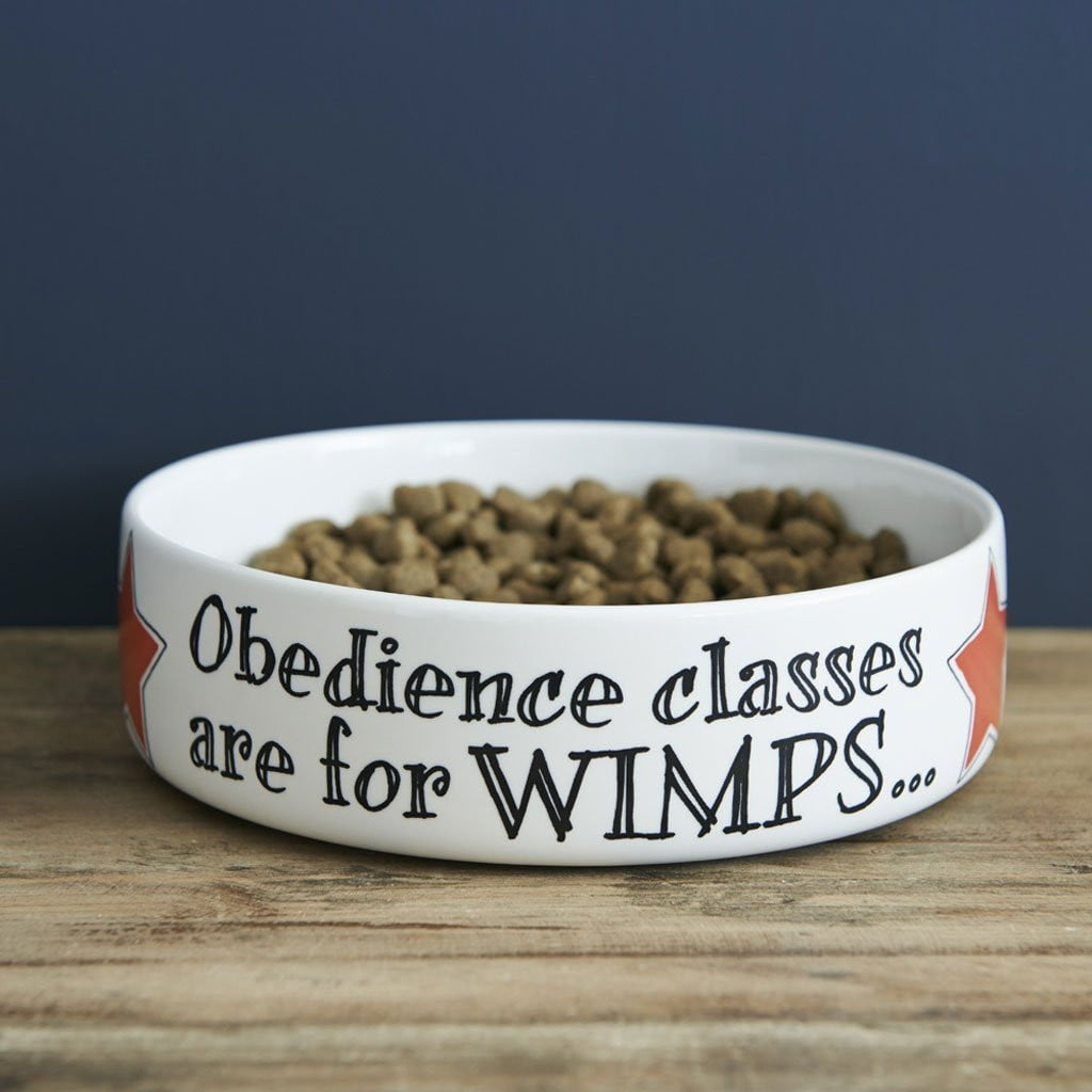 Obedience Classes Are For Wimps Large Bowl by  Insideout