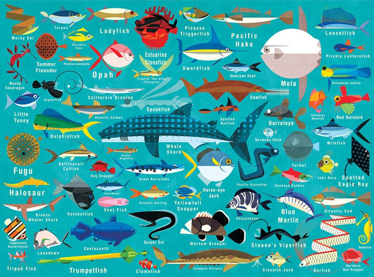 Ocean Life 1000 Piece Jigsaw Puzzle by  Insideout