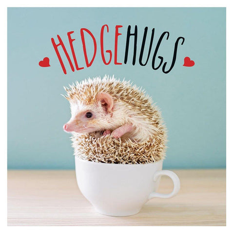 Hedgehugs - insideout-home