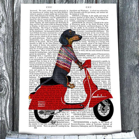 Dachshund On A Moped Mounted Print - insideout-home