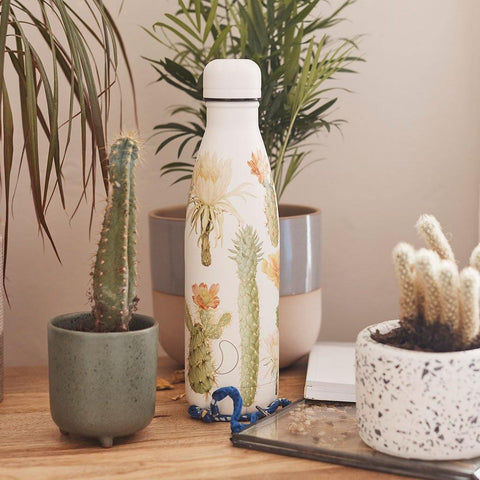 Chilly's Bottle Botanical Cacti 500ml - Insideout