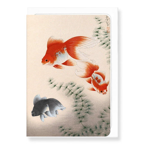 Goldfish Card - insideout-home