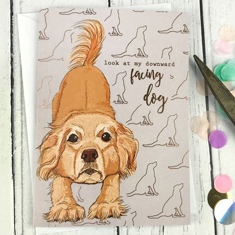 FA24 Look at my downward facing dog card - insideout-home