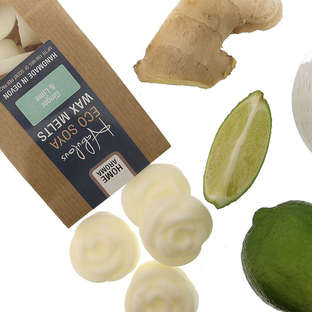Ginger & Lime Eco Soya Wax Melts Pack by  Insideout