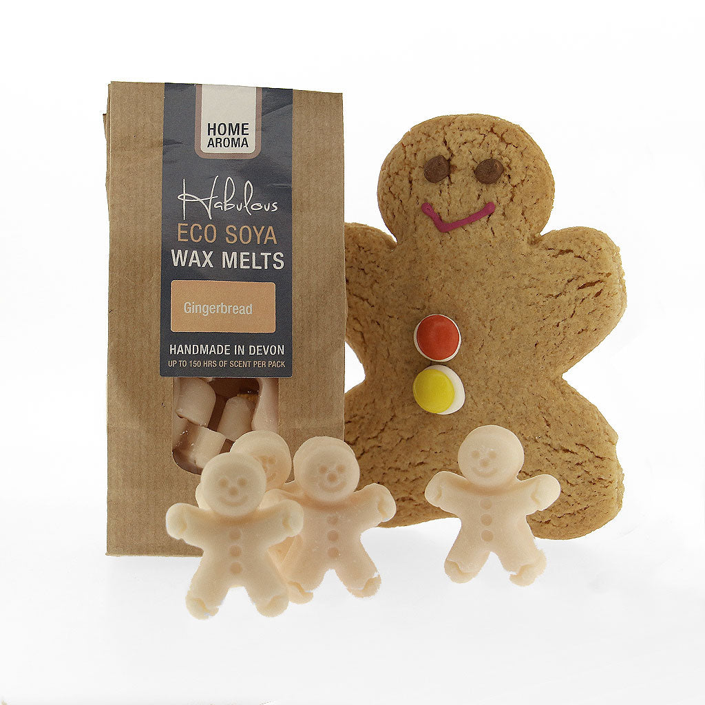 Gingerbread Eco Soya Wax Melts Pack, Raw Candle Wax by Insideout