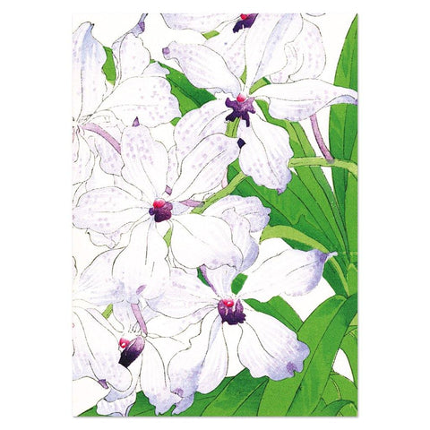 Orchid Card - insideout-home