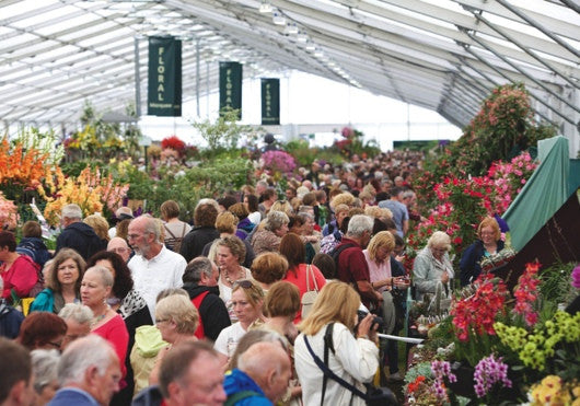This Summer's Top 5 Flower Shows