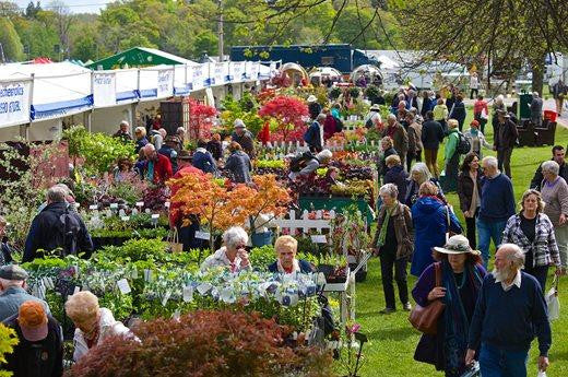 What to Expect at the RHS Malvern Spring Flower Show